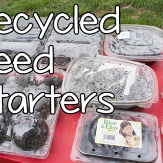 Seed Starters from Recycled Materials