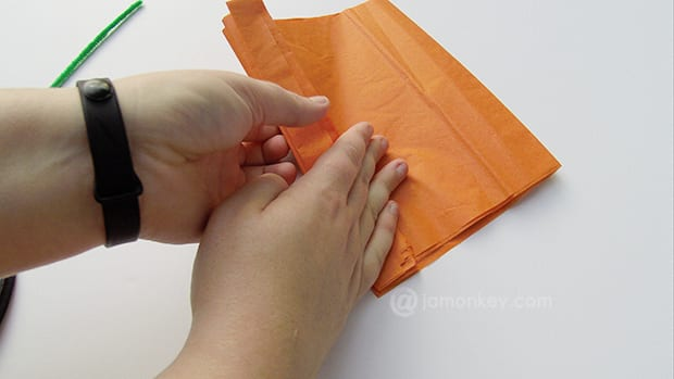 Fold tissue paper in an accordion fold