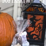 Howlin' Halloween Treat Bags for Dogs – Free Printable