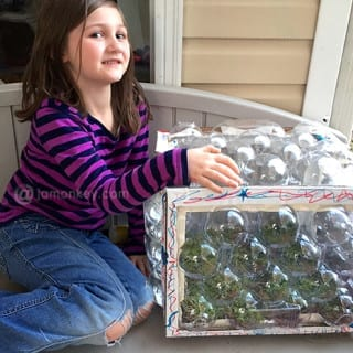 Junk to Terrarium – Recycled Craft
