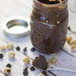 Homemade Hazelnut Chocolate Spread – Blendtec Review