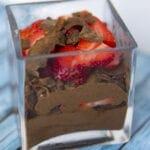 Fruity Chocolate Froyo