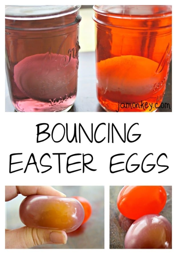 Naked Egg Science Experiment