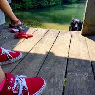 Capturing Summer Moments
