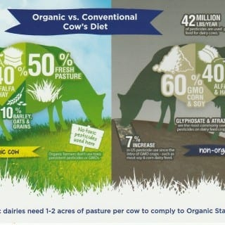 What I Learned About Organic Dairy Farming on My Stonyfield Farm Tour