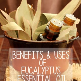 Benefits & Uses of Eucalyptus Essential Oil