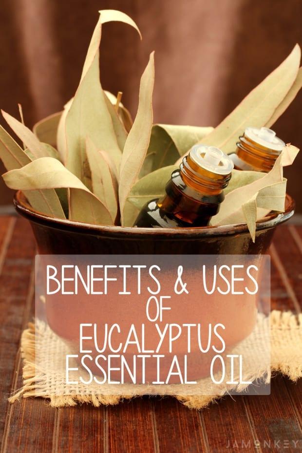 Benefits & Uses of Eucalyptus Essential Oil