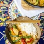 Thai Coconut Curry Chicken and Vegetables