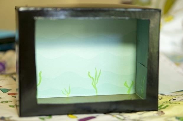 Cardboard Box Aquarium