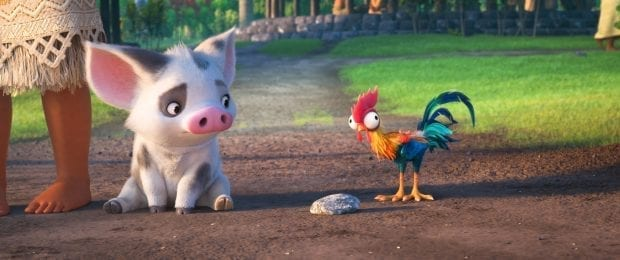 Pua and Hei Hei ©2016 Disney. All Rights Reserved.