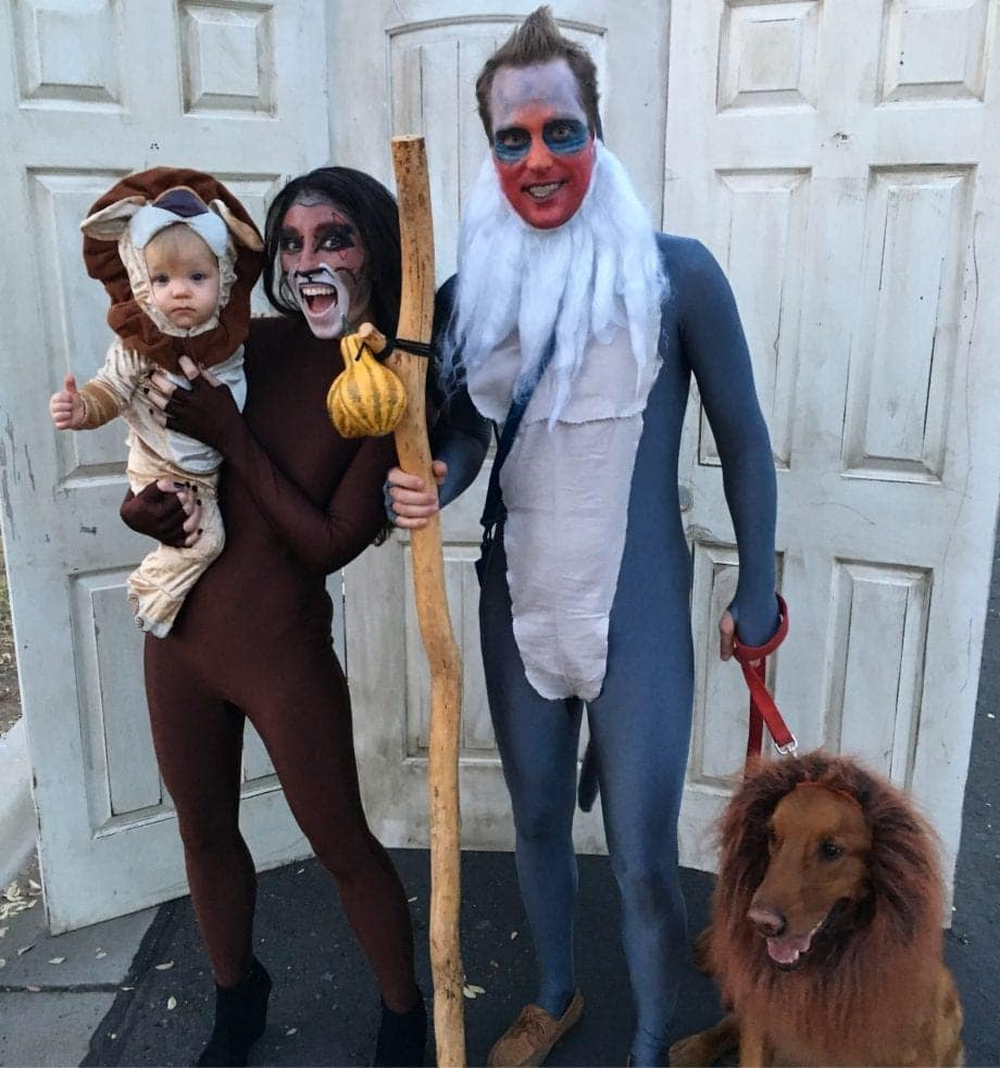 The Lion King Family Costume