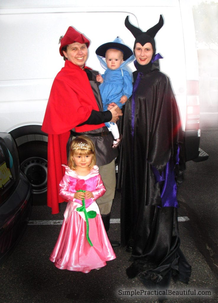 Sleeping Beauty Family Costume