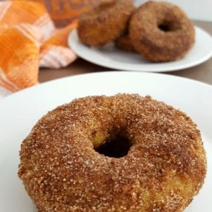Gluten Free Pumpkin Sugar & Spice Donuts