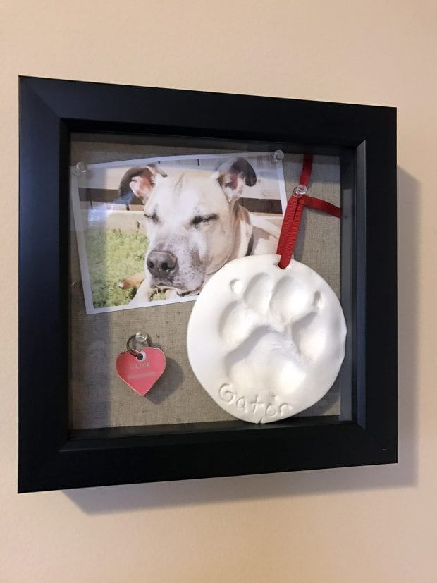 Pet Shadow Box - How to Commemorate Your Lost Pet