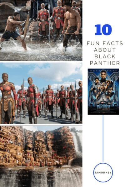 10 Fun Facts about Black Panther10 Fun Facts about Black Panther