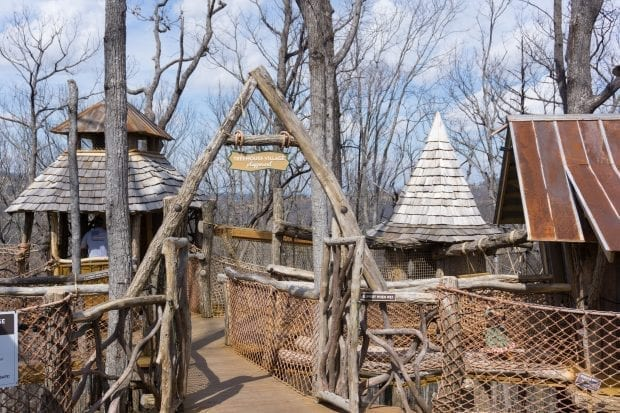 Anakeesta treehouse playground