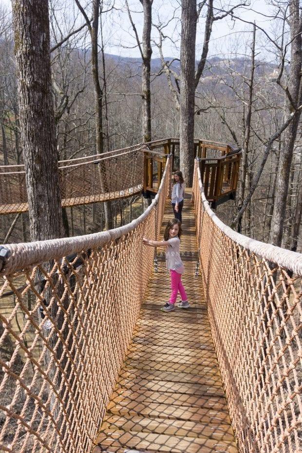 anakeesta treetop canopy walk