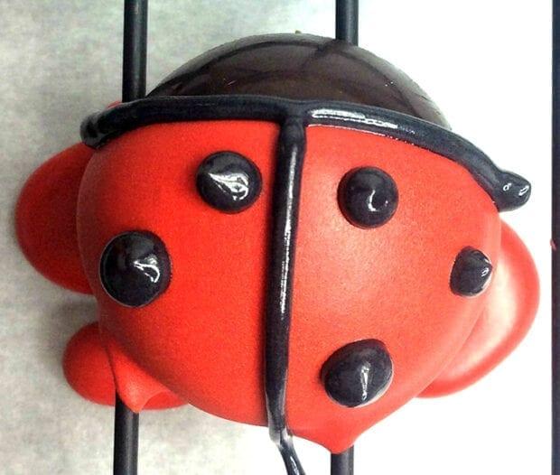 Ladybug Chocolate