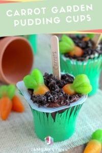Carrot Garden Pudding Cups
