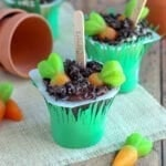 Carrot Garden Pudding Cups
