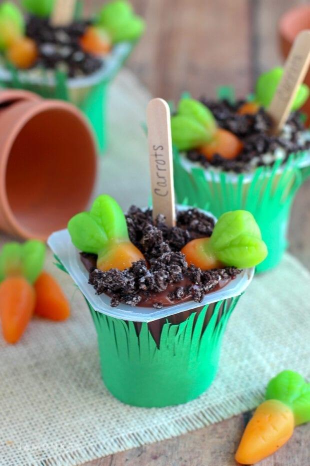 Carrot Garden Pudding Cups-9