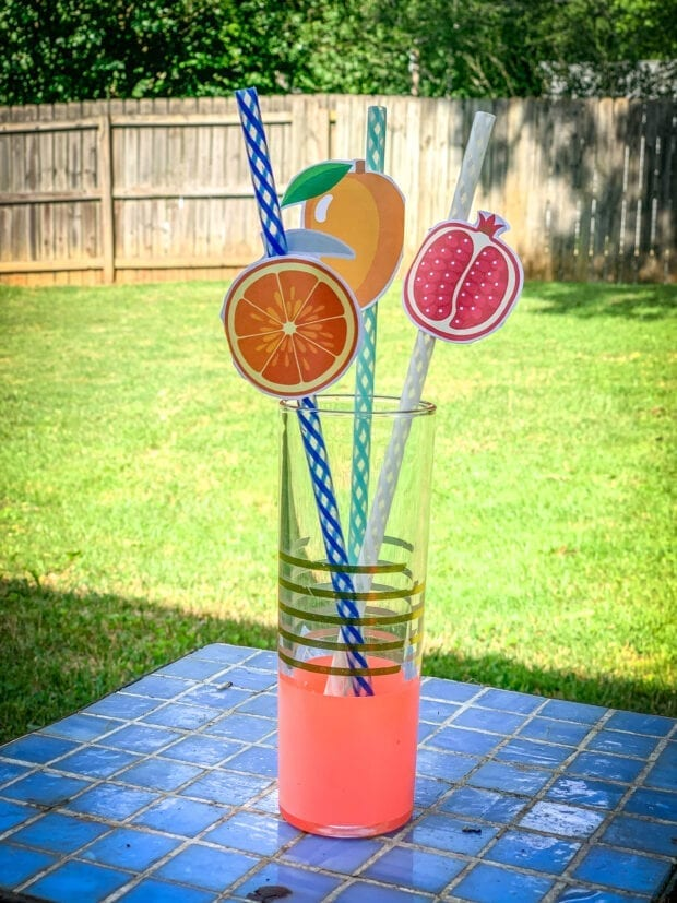 Fruit Straw Toppers