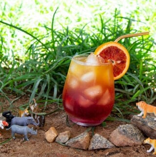Circle of Life Drink - The Lion King inspired drink