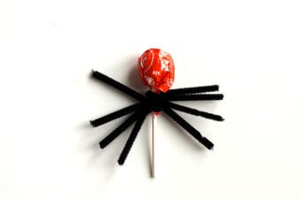 Spread out Black Pipe Cleaners on Lollipop